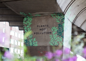 Plants not Pollution
